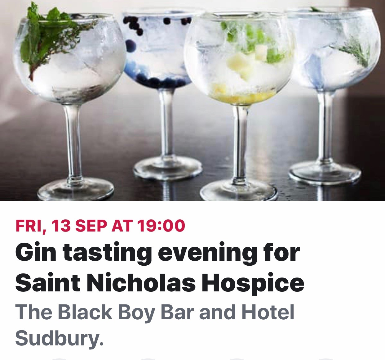 Charity Gin Night